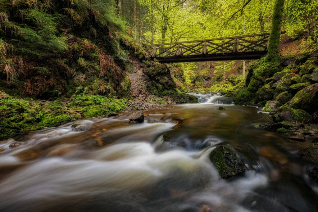 Schwarzwald16